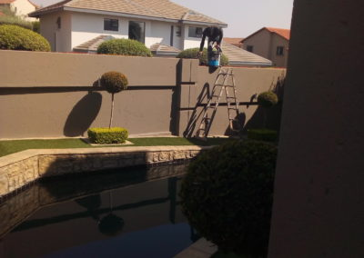 garden wall painting services